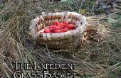 La cesta de pasto expediente