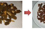 Frito Morel (variedad de principio de temporada)
