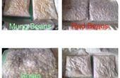 Fermentación de frijoles - Tempeh DIY