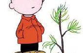 Un soporte de árbol de Navidad tradicional en 3 sencillos pasos--Charlie Brown estilo