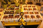 Hydroponic goteo jardín de verduras, hierbas o flores