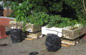 ¿Mejor maldito sistema hidropónico bomba solar reciclado orgánico