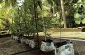 Sistema de riego DIY para plantas