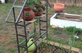 Enrejado de metal para jardín vides