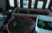Cómo construir un jardín barato