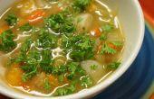 Investigación estudios en sopa de pollo