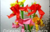 Origami flor de Teo