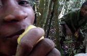 Remedio de la selva malgache: Multiuso limón