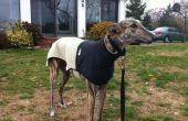Capa de Greyhound desde antiguo chaleco de paño grueso y suave