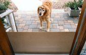 Desplazamiento perro puerta protege de arañazos