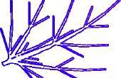 Bullicio de Transfiguración: Laser corte grabado hoja