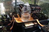 Acción capilar planta abrevadero