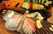Brillantes mariposas regalo caja de adornos