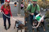 Trajes con temática de Mario para perros y personas