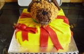 Perro en pastel presente