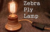 Zebra Ply Lamp
