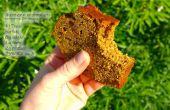 Fiery tortas de pan de calabaza (GF)