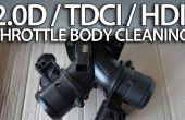 Limpiar el cuerpo de la mariposa en el motor diesel 2.0 (Volvo, Ford, Peugeot, Citroen)