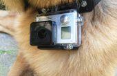 Collar de perro de GoPro