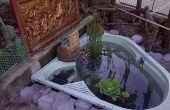 Estanque de peces jacuzzi