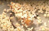 Palomitas de maíz de 3 minutos en una mazorca