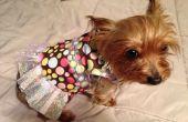 Casa perro vestido / camisa para principiantes