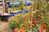 Contenedores de depósito hacen jardinería fácil
