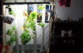 Jardín de Aquaponic vertical