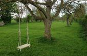Árbol tradicional de jardín Swing