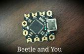 Escarabajo: Minimizar su proyectos de Arduino