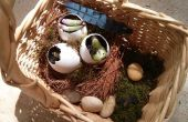Macetero de nido de pájaro