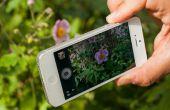 Cómo crear fotografía impresionante con iPhones!