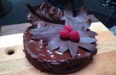 Hojas de olvido chocolate Torte con Chocolate Bay y col