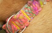 Collar de perro Appliqued del hilado