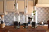 Plantas en botellas de