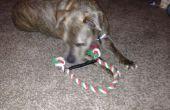 Perro de juguete (entrada concurso mascota) de larga duración