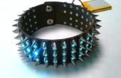 LED tacon Collar