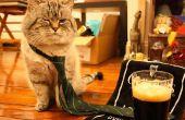 Elaborar cerveza su propia cerveza de malto irlandesa - todo grano