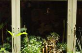Una cortina de luz