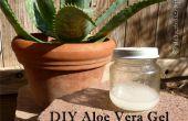 Gel de Aloe Vera DIY