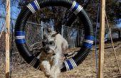 Perro agilidad neumático salto de plataforma