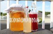 Doble fermentado de Kombucha