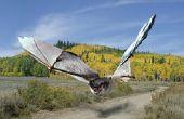 Gigante de murciélagos - cómo integrar dos fotos Pixlr usando