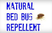 Repelentes de insectos de la cama de la natural