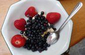 Hacer una cosechadora de fruta de baya salvaje / recogedor de botellas vacías de Bleach