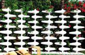 Añadir hermoso color a tu jardín con impresionantes esgrima