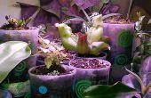 Auto riego mini taza jardinera