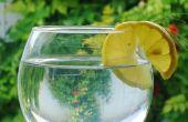 Cómo hacer saludable agua del grifo cata