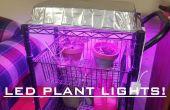 LED Grow luz para plantas de interior por 30 $! Fácil!