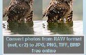 Convertidor de RAW: un software libre para convertir primas a JPG